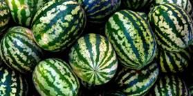 landscape-1438283137-watermelon (1)